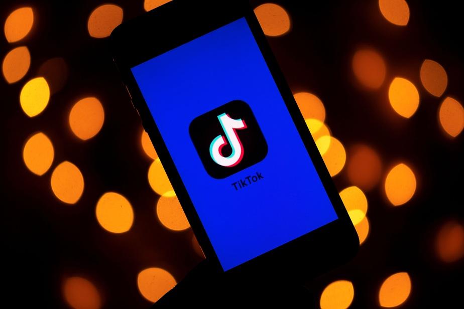 TikTok : la France s'intéresse à son tour aux pratiques de l'application