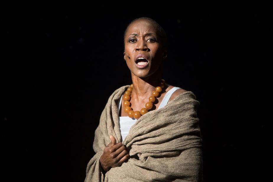 TRIBUNE : Pour la libération de Rokia Traoré