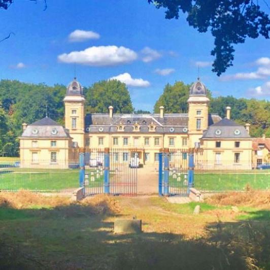 Les grilles, restaurées, proviennent du château des Tuileries.