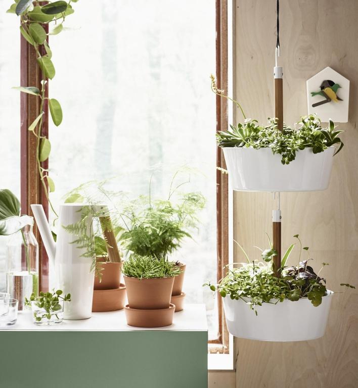 Les plantes suspendues sont mises à contribution pour habiller un coin dégarni d'une pièce. Elles apportent une touche de fantaisie, estime Heena Saini, porte-parole d'IKEA Canada.