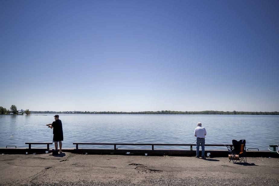 Réjean Dinel, résidant de Verdun qui pratique la pêche urbaine depuis quelques années, vient à l'occasion pêcher avec son fil Richard (à gauche) au parc Saint-Louis.