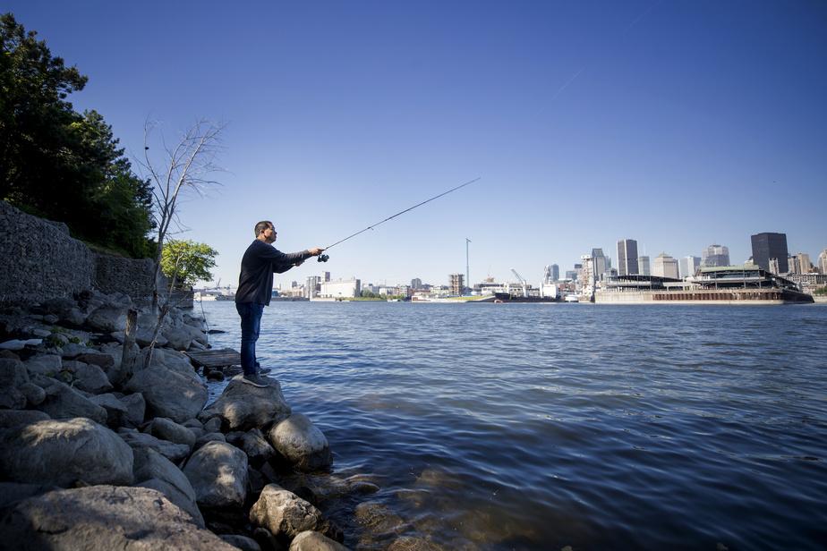 Jinquan Ou pêche autour de Montréal depuis environ deux ans. Ce matin-là, c'est sur les berges du parc de Dieppe, en face du centre-ville, qu'il s'est installé.