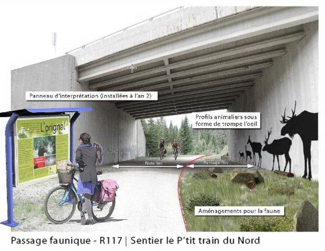 Une image de l'aménagement prévu du passage faunique Ivry