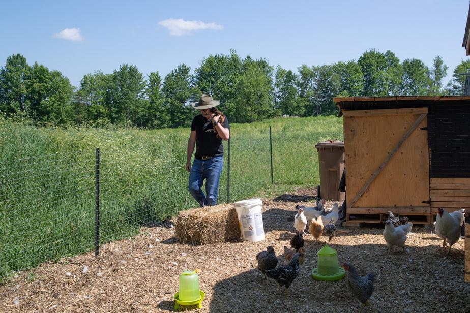 «La ferme commence à avoir sa propre vie, c'est plus grand que nous», constate Richard Ouellette. Deux ruches ont par exemple été installées au printemps et le poulailler accueillera plus de poules.