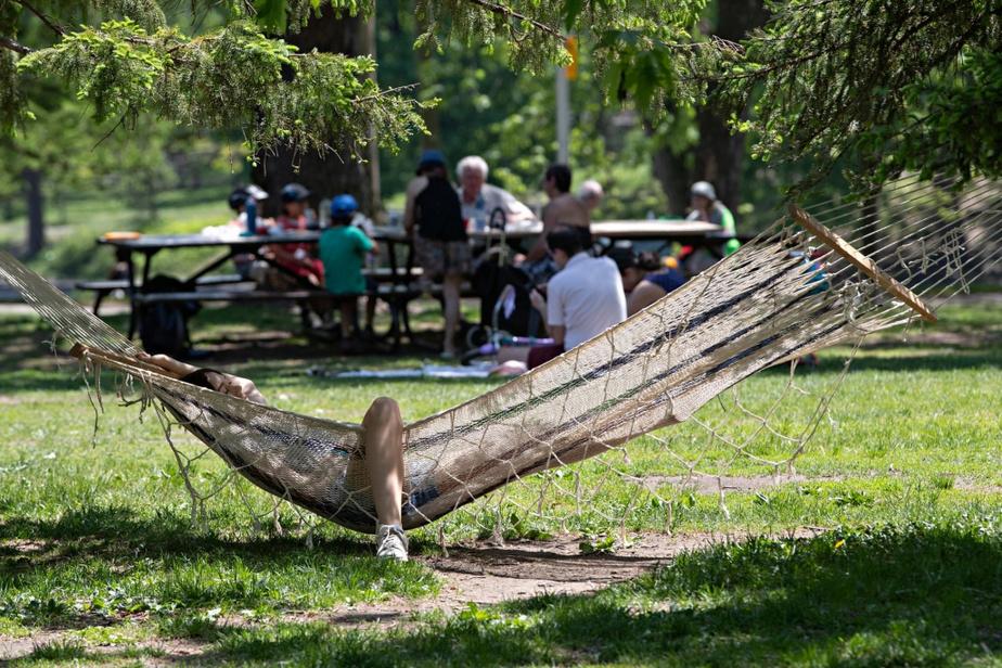Une jeune femme se détend dans son hamac qu'elle a installé entre deux arbres du parc La Fontaine.