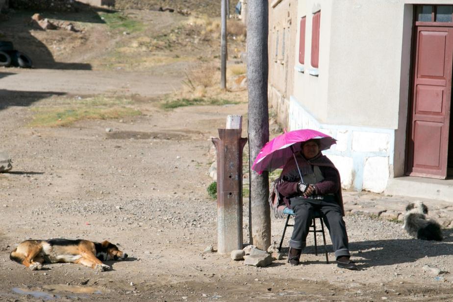 En quittant La Paz, on gagne l'Altiplano, une vaste plaine dans laquelle sont dispersés quelques villages.