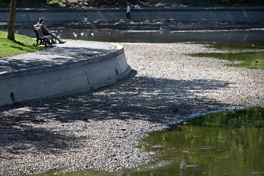 Les bassins du parc La Fontaine sont vides depuis quelques semaines. Celui du sud «a été vidé pour effectuer l'installation de pompes et de grillage» et sera rempli sous peu, a expliqué la relationniste de la Ville, Marilyne Laroche Corbeil. Pour ce qui est du bassin nord, «il avait été vidé en vue du réaménagement du théâtre de la Verdure. Les travaux devaient commencer ce printemps, mais ils ont été déplacés à l'automne en raison de la crise sanitaire liée à la COVID-19», a complété sa collègue Anik de Repentigny, en affirmant qu'il serait rempli la semaine prochaine.