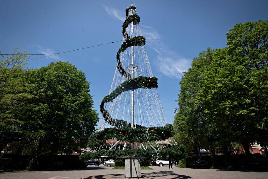 Au parc Dante, dans la Petite-Italie, un immense arbre de Noël rappelle que cette chaleur n'est que passagère.