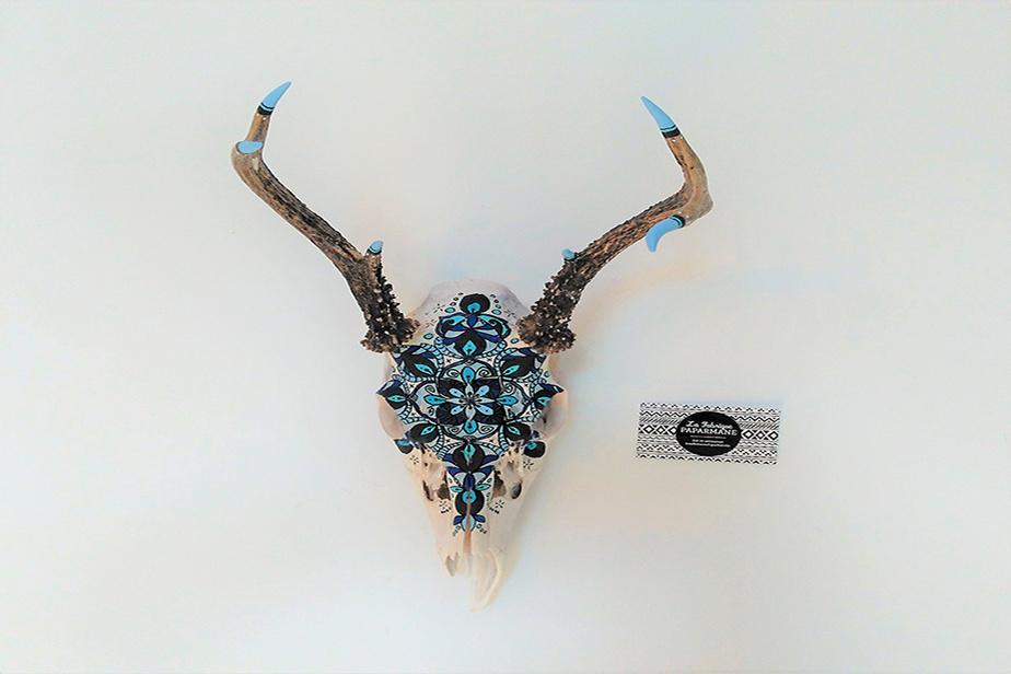 Crânes de coyote, cerf, castor, orignal, ours, vache… Amélie Roberge travaille avec ce que la nature lui donne.