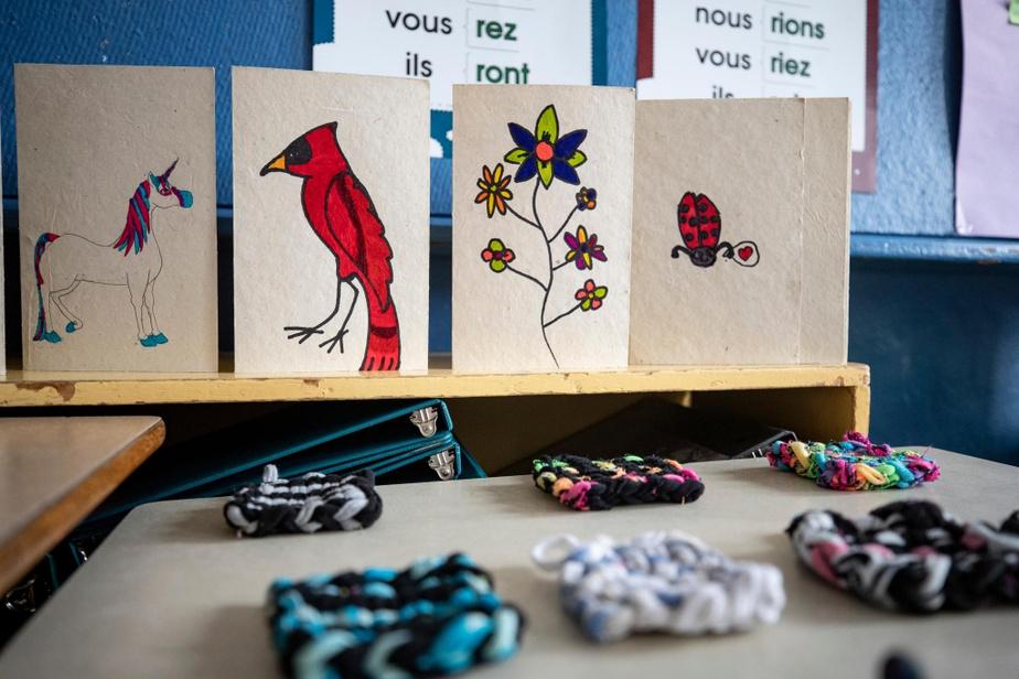 Des échantillons de la production de WowÉcolo: cartes imprégnées de semences et ornées à la main et éponges à récurer, tressées à partir de vêtements de rebut.