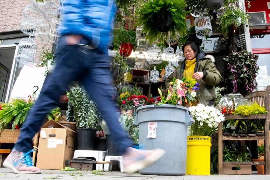 Mère de 14enfants et de tout un quartier, Tamey Lau, ex-reine de beauté de Hong Kong devenue reine du Mile End, en a bravé, des tempêtes.