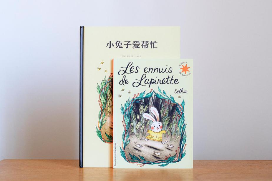 Les ennuis de Lapinette, publié par Cathon en 2015, a été réédité en France (chez Gallimard Jeunesse) et enChine.