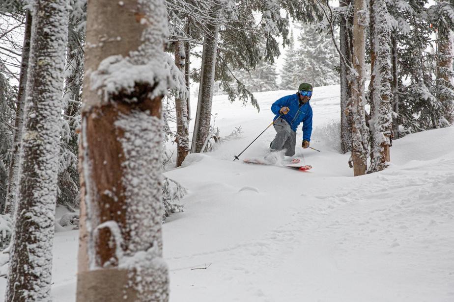 Sous-bois Si BrettonWoods est idéale pour les skieurs novices, le centre regorge aussi de 35pistes en sous-bois qui s'étendent sur quelque 33hectares. Plusieurs pentes ne sont pas piquées des vers, notamment dans la section Rosebrook, qui propose une demi-douzaine de sous-bois réservés aux experts. Il faut toutefois beaucoup de neige pour en profiter, ce qui n'était pas le cas lors de notre passage. Mais notre guide Ian s'est néanmoins aventuré pour la cause dans FastFall, une courte section boisée située près du sommet principal.