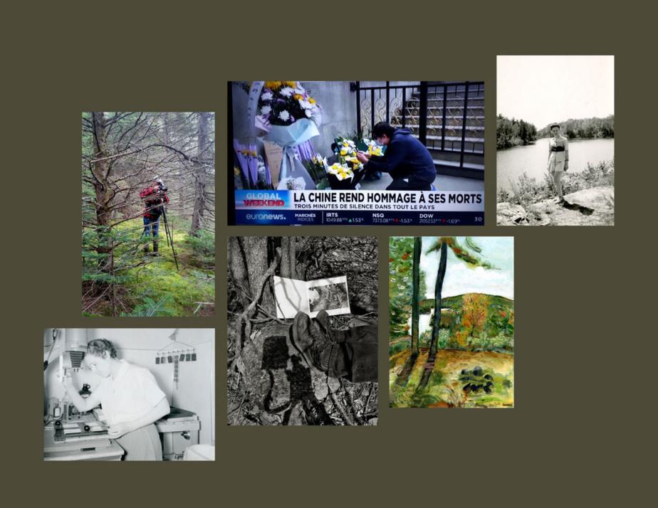 Un montage de MichelCampeau fait ce mois-ci avec plusieurs photographies et une captation télévisuelle. Design graphique: BrunoRicca et MichelCampeau