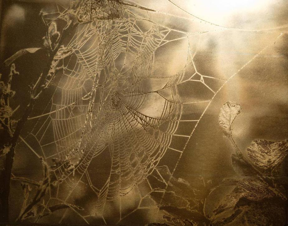 Petrography - Twelve Bitumen Photographs (détail), 2014-2018, Warren Cariou (Métis), photographie au bitume, 20cmx25cm. Exposée à la galerie d'art Stewart Hall.