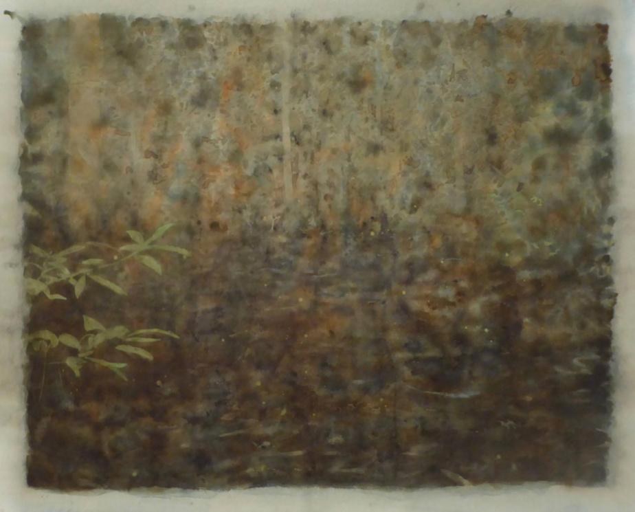 Bog, 2019, Ripley Whiteside, aquarelle et encre de noix, 105,4cmx130,8cm