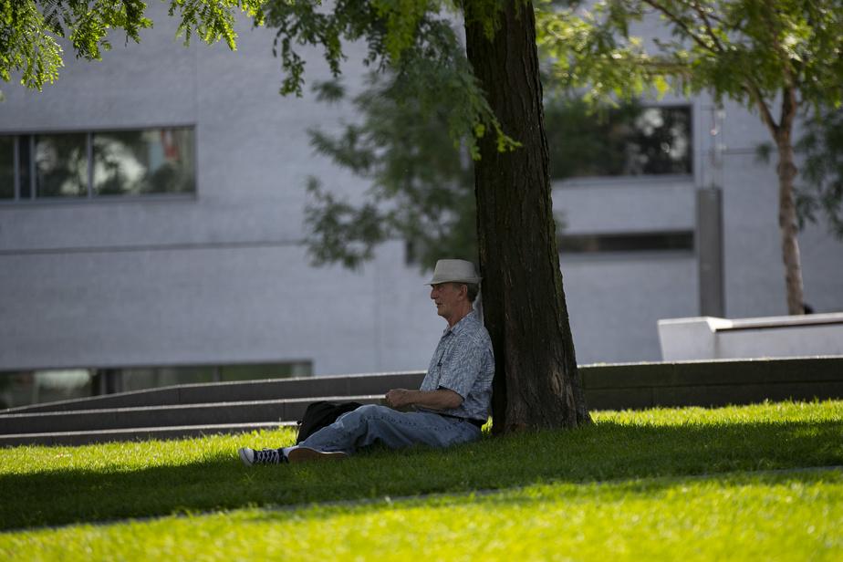 Photos de la canicule, vague de chaleur en ville. M.Groan prend une petite pause à l'ombre sur le parterre du Quartier des spectacles.