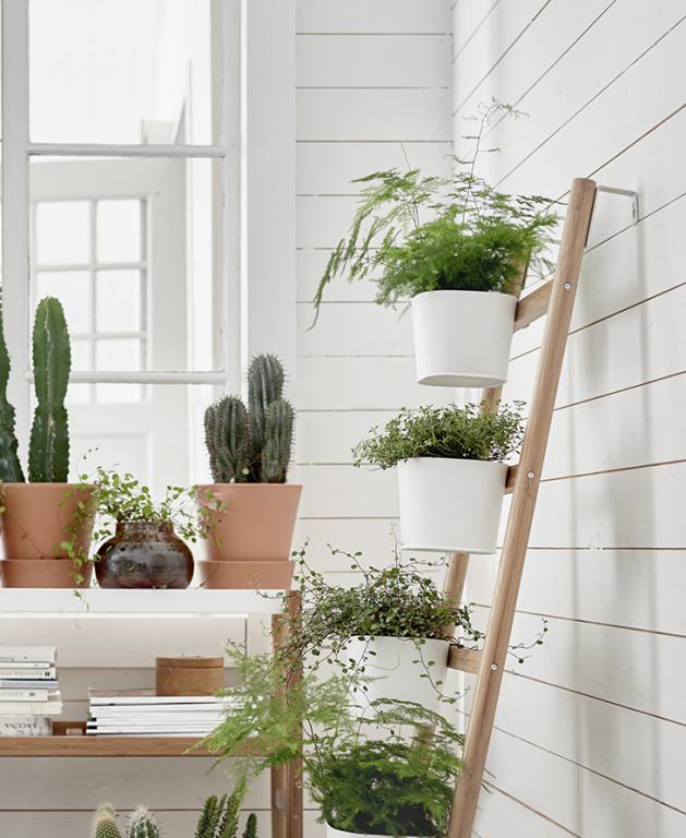 Mieux vaut disposer les plantes sur des surfaces de différentes hauteurs pour attirer l'œil et leur rendre justice. Les trois types de supports de la collection Satsumas sont en bambou.