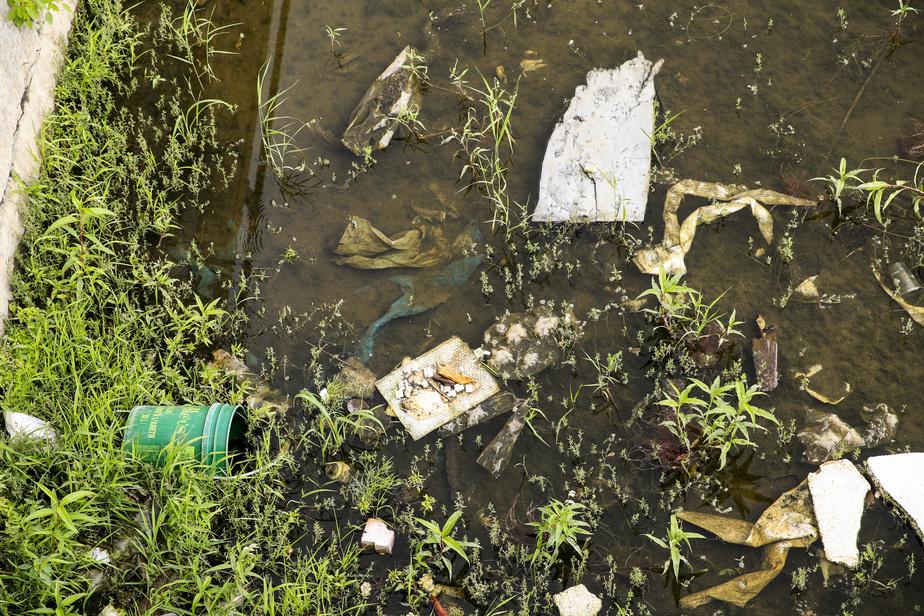Outre les algues, c'est aussi la quantité de déchets dans le canal de Lachine qui frappe.