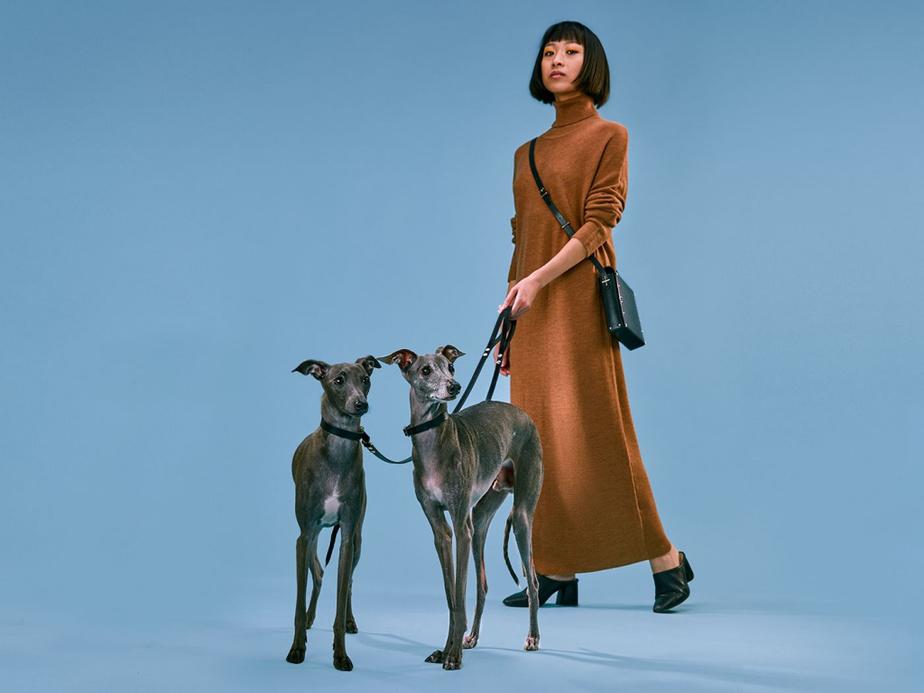 La nouvelle collection d'accessoires pour chien signée Partoem est offerte en ligne.