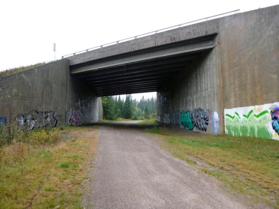 Le passage faunique Ivry sous sa forme actuelle