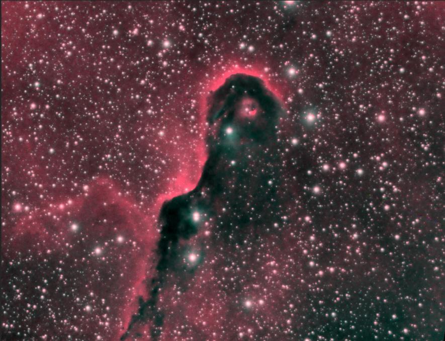 La nébuleuse de la Trompe d'éléphant dans la constellation de Céphée, prise par M.Saint-Jean en 2018. Il s'agit de la compilation de 19photos prises avec une exposition de 300secondes chacune. De la très haute voltige!