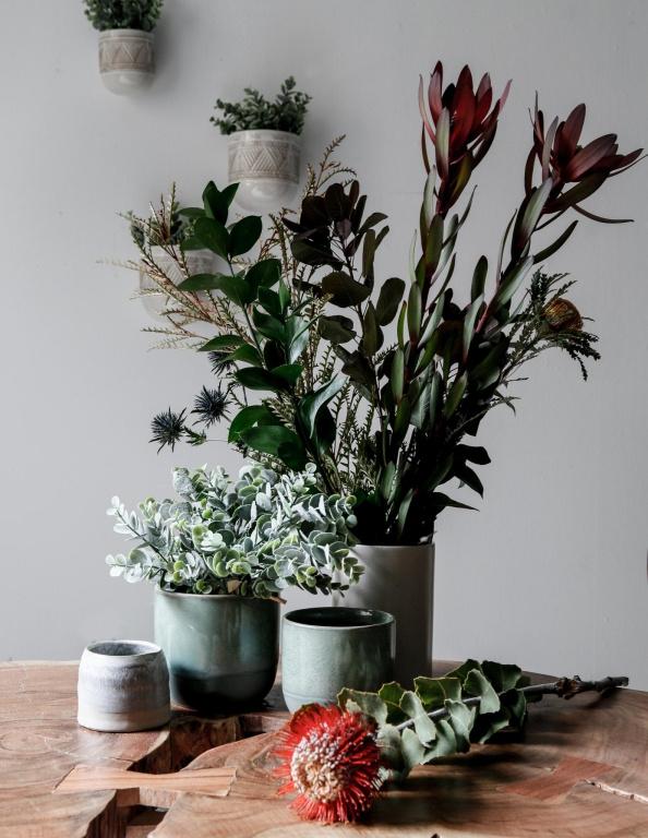 Mélanger des plantes entre elles crée un volume intéressant sur une table, souligne la photographe AnneBrun, directrice de création web chez Zone. Il ne faut pas hésiter à jouer avec les formes et les couleurs des cache-pots, précise-t-elle. Ci-contre, ils sont tous de couleurs froides.
