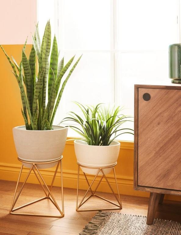 Une plante près de la fenêtre, c'est bien. Deux, c'est mieux. Cache-pots avec supports Abela, chez Structube, 29$ et 39$.