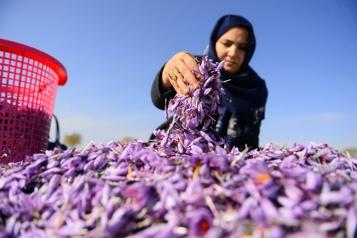 Afghanistan Soutien économique de l'ONU, sans transfert d'argent aux talibans
