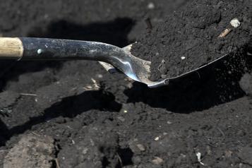 Les composts urbains néfastes pour l'environnement