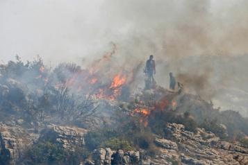La Syrieexécute 24 personnes pour avoir provoqué des incendies en 2020