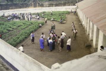 Birmanie L'armée birmane torture systématiquement les détenus
