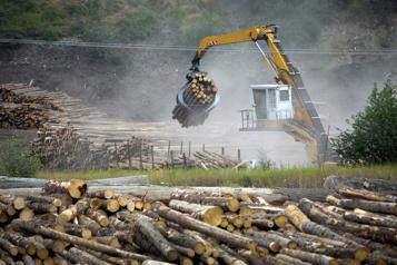 Gaz à effet de serre Le Canada «camoufle» des émissions de l'industrie forestière